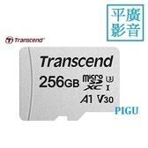 平廣 創見 micro SD 256GB 256G 記憶卡 送好禮保5年 A1 V30 SDXC卡 Transcend