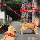 狗狗牽引繩泰迪金毛狗錬子狗項圈大型犬遛狗繩子胸背帶中型犬用品 港仔會社