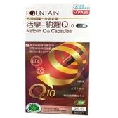永信FOUNTAIN活泉 納麴Q10膠囊 60粒【德芳保健藥妝】納豆、紅麴
