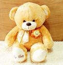 泰迪熊公仔抱枕90公分【藍星居家】