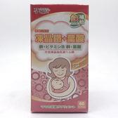 孕哺兒 高單位凍晶鐵+葉酸 膠囊 60粒 產前產後補鐵補血媽咪必備滋補營養品-超級BABY