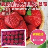 【台灣草莓】嚴選苗栗大湖香水草莓X1盒 【單盒12-15顆/400克±10%/含盒重】
