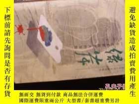 二手書博民逛書店罕見綠岸---一個藝術家在夏天的冒險Y28340 張宗栻 北京十