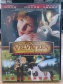 影音專賣店-B13-038-正版DVD*動畫【絨毛兔傳奇/The Velveteen Rabbit】-珍西摩爾