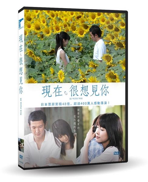 【停看聽音響唱片】【DVD】現在,很想見你