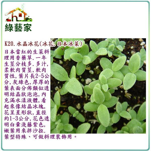 【綠藝家】大包裝K20.水晶冰花種子(冰花.日本冰菜)0.8克(約2500顆)