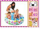 *粉粉寶貝玩具*親親系列jilong-海洋世界三環泳池 91x25公分~送50球