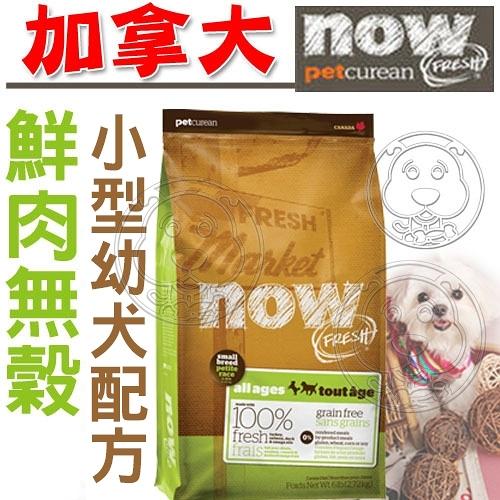 【 培菓平價寵物網 】now鮮肉無穀小型幼犬狗糧6磅2.72kg