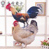 售完即止-惡搞玩具創意仿真母雞抱枕靠墊大公雞動物惡搞玩偶毛絨玩具11-27(庫存清出S)