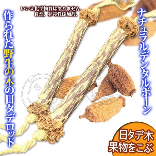 【培菓平價寵物網】自然鮮系列》木天蓼虫癭果潔牙骨貓玩具NF-004