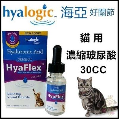 『寵喵樂旗艦店』【含運】海亞好關節貓用濃縮玻尿酸30cc--關保護關節 緩解疼痛 液狀 好吸收