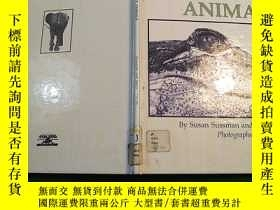 二手書博民逛書店Lies(People罕見believe) about anim
