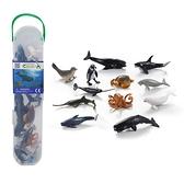 【永曄】collectA 柯雷塔A-英國高擬真動物模型-迷你海洋生物組2(盒裝-12入)