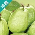 台灣鮮脆芭樂3粒(840g±5%/盒)【愛買冷藏】
