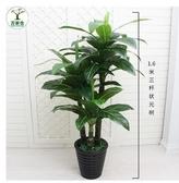 仿真植物 仿真植物盆栽假綠植裝飾室內擺件防真花塑料芭蕉樹客廳大網紅盆景完美