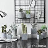 仿真植物裝飾假花擺件盆栽綠植室內客廳多肉小盆景擺設        瑪奇哈朵