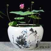 大號陶瓷花盆水養植物睡蓮盆缸銅錢草荷花水培器皿【毒家貨源】