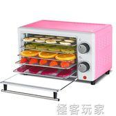 乾果機食物脫水風乾機家用小型水果蔬菜肉類食品烘乾機 igo 電壓:220v『極客玩家』