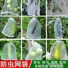 防鳥網 防蟲網袋草莓防果蠅防鳥蟲用網果樹袋葡萄套袋專用無花果防鳥神器 阿薩布魯