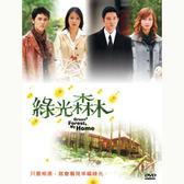 台劇 - 綠光森林DVD (全23集) 立威廉/劉品言/阮經天