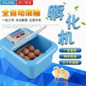孵化機 鴻業水床孵化機家用型雞鴨鵝孵化器20枚小型56枚卵蛋箱全自動控溫 Igo 免運