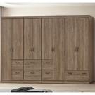 衣櫃 衣櫥 CV-151-7A 樂比9....