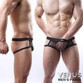 情趣用品 內褲 含滋潤液VENUS 男士性感情趣大網紗 露屁屁 性感情趣丁字褲 黑色 T070 型男必備