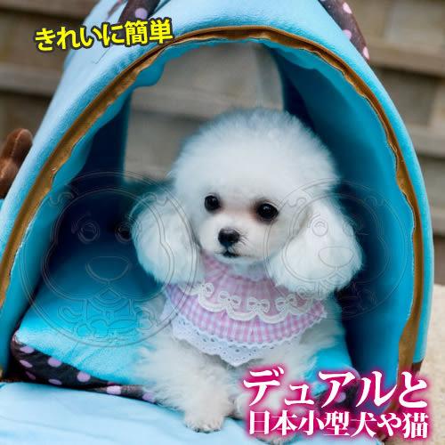 【培菓平價寵物網】DYY》日系小型犬貓用兩用外出可攜移動包睡窩