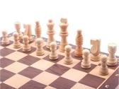 象棋 磁性 實木 高檔迷你大號摺疊棋盤