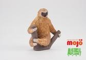 【Mojo Fun 動物星球】特殊動物-二趾樹懶 387180