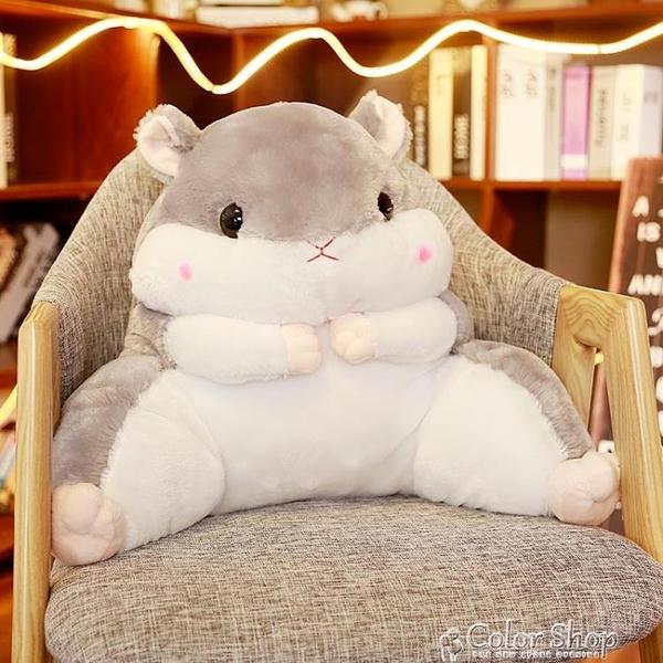倉鼠靠背靠枕倉鼠抱枕被子兩用靠背護腰靠墊靠枕辦公室腰墊毯子女座椅枕頭椅子快速出貨YYP