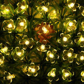 LED荷花燈圣誕節太陽花電池盒燈串 院子樹房間DIY裝飾閃燈wy【店慶滿月好康八折】