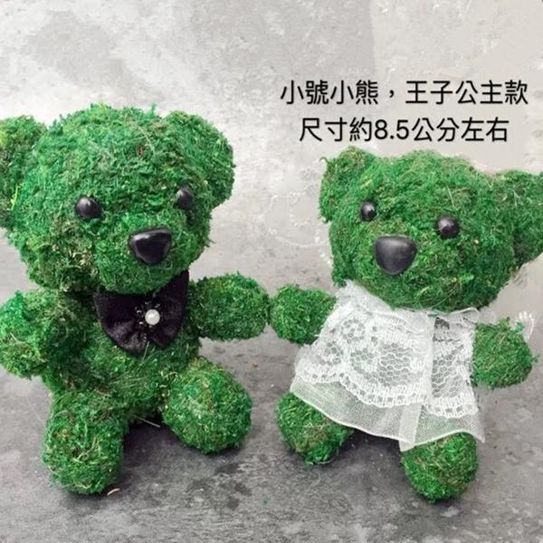 永生花花材,苔蘚動物,小熊王子公主款,一對