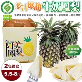 【果農直配-全省免運】 產銷履歷牛奶鳳梨(5.5斤-8斤±10%/2隻禮盒)