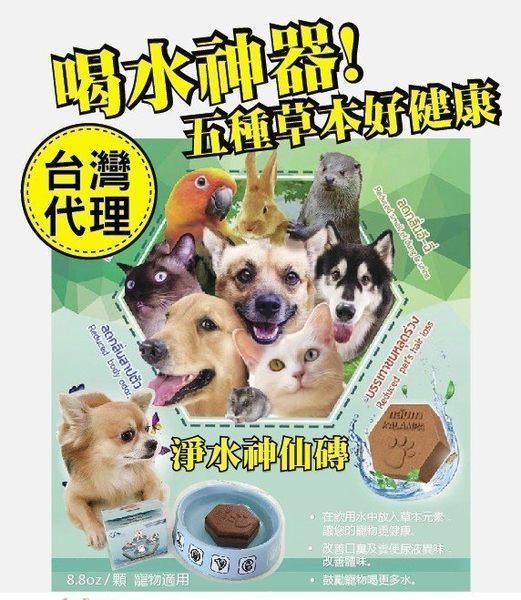 *KING WANG*【台灣代理商正貨商品】泰國寵物喝水神仙磚《淨水神仙磚》8.8oz/顆 寵物適用