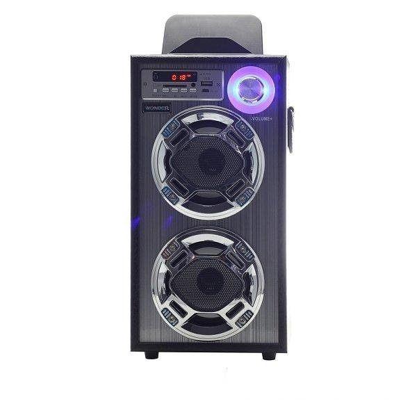 WONDER 旺德 卡拉OK歡樂唱 USB/SD/MP3/FM 隨身音響 WS-P001◤具2組麥克風插座◢