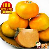 果之家 產地特選高山摩天嶺甜柿禮盒8顆禮盒(10A,單顆9-10兩)