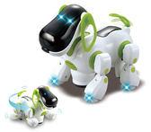 TENGLONG B/O 電子狗