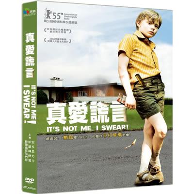 真愛謊言DVD