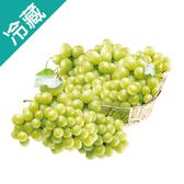 印度綠葡萄(500G±5%)/盒【愛買冷藏】
