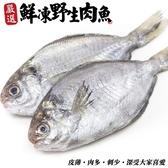 【海肉管家】新鮮野生肉魚/肉鯽仔X1包(200g土10%尾/2尾/包)