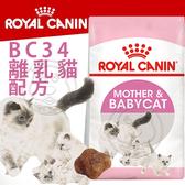 【培菓寵物48H出貨】FHN 法國新皇家飼料《離乳貓BC34》400g (蝦)