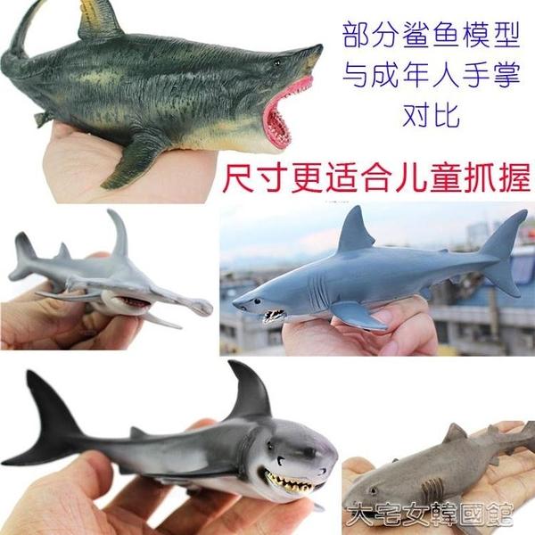 仿真擺件大白鯊魚玩具樹脂大小號巨齒鯊動物虎鯊巨口鯊仿真模型擺件玩偶 大宅女韓國館