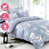 單人二件式床包+枕套組 舒適磨毛布#38