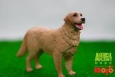 【Mojo Fun 動物星球頻道 獨家授權】 黃金獵犬 387198