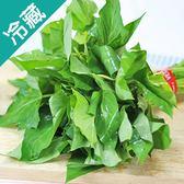 【產銷履歷】翠綠地瓜葉1包(250g±5%/包)【愛買冷藏】