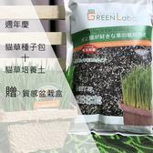 週年慶活動GreenLabo日本DIY貓草種子包+培養土贈盆栽