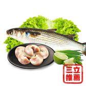 【天時福】足三年養殖生烏魚+烏魚腱組(小組)-電電購