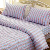 藍色步調 加大五件式 兩用被床罩組/RODERLY