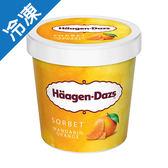 哈根達斯柑橘雪酪品脫473ML/杯【愛買冷凍】